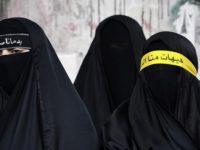 niqab (Quatrième chronique de la peste couronnée)